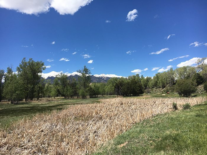 Stoney Springs - Salida, Colorado | Blue Mountain Belle