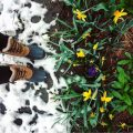 Snow boots in Spring Flowers