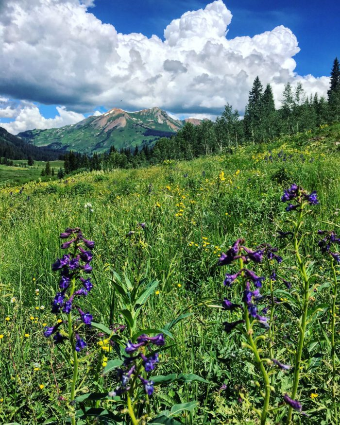 Colorado Roadtrip: Crested Butte - What to do, where to stay, where to eat