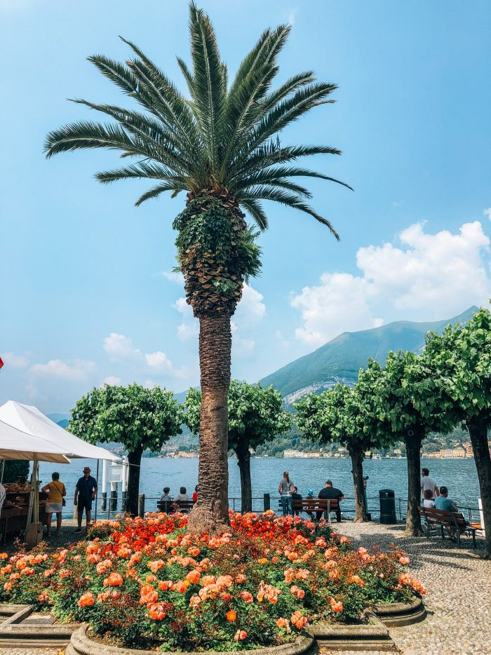 Bellagio Waterfront Blue mountain belle guide
